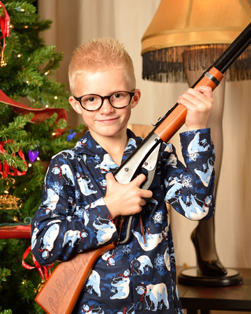 the red ryder bb gun